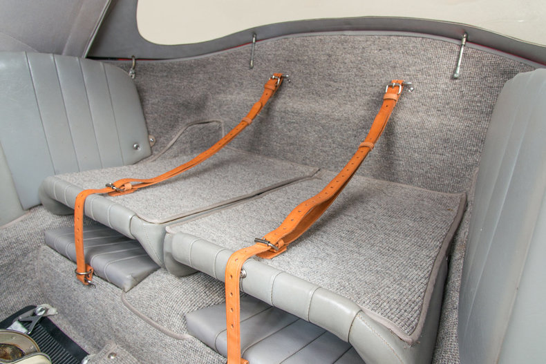 Interior luggage straps